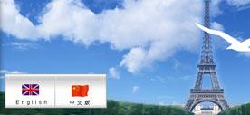 香港新源公司网站程序二次开发